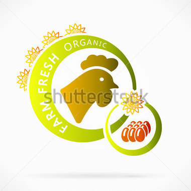 Food   Drinks   Organic Chicken Eggs Farm Fresh Abstract Illustration