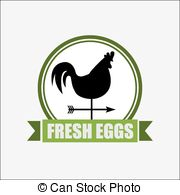 Fresh Eggs Vector Clipart And Illustrations