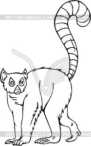 Ring Tailed Lemur   Vector Clipart