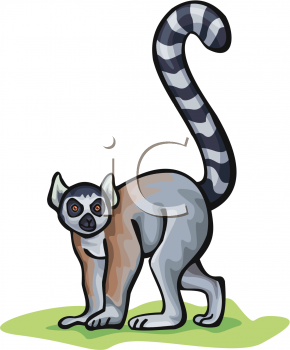 Royalty Free Lemur Clipart