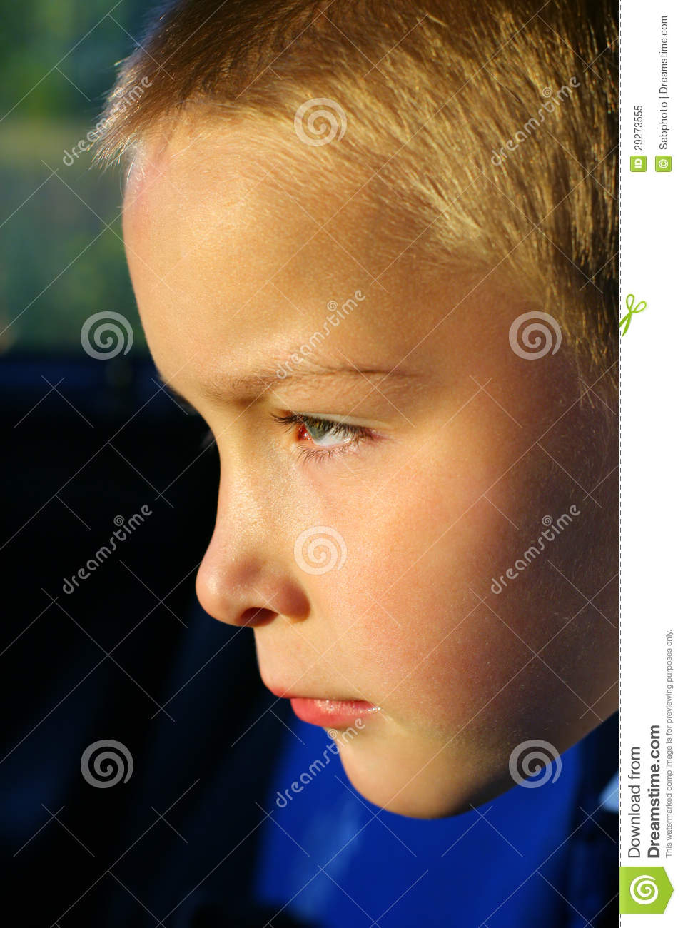 Serious Boy Face Royalty Free Stock Photo   Image  29273555