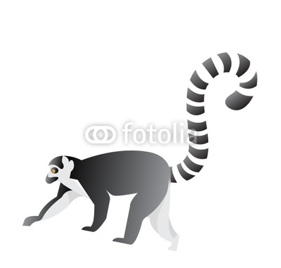 Vector Lemur Clip Art Stock Image And Royalty Free Vector Files On