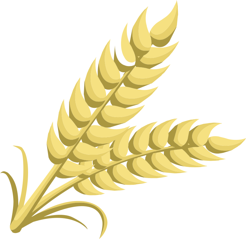 Clip Art Wheat Free Foods – Clipart Download