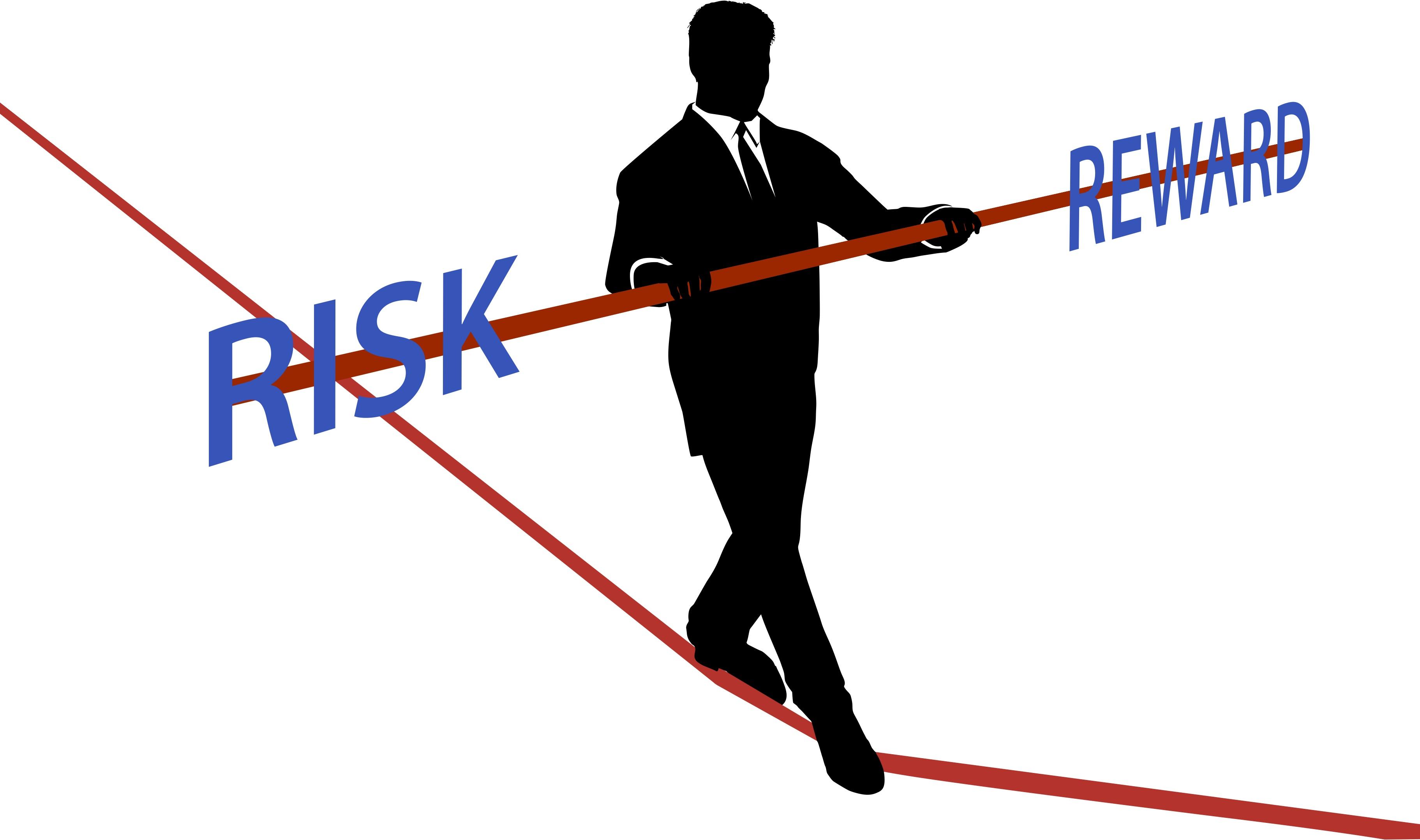 clipart risk management - photo #20