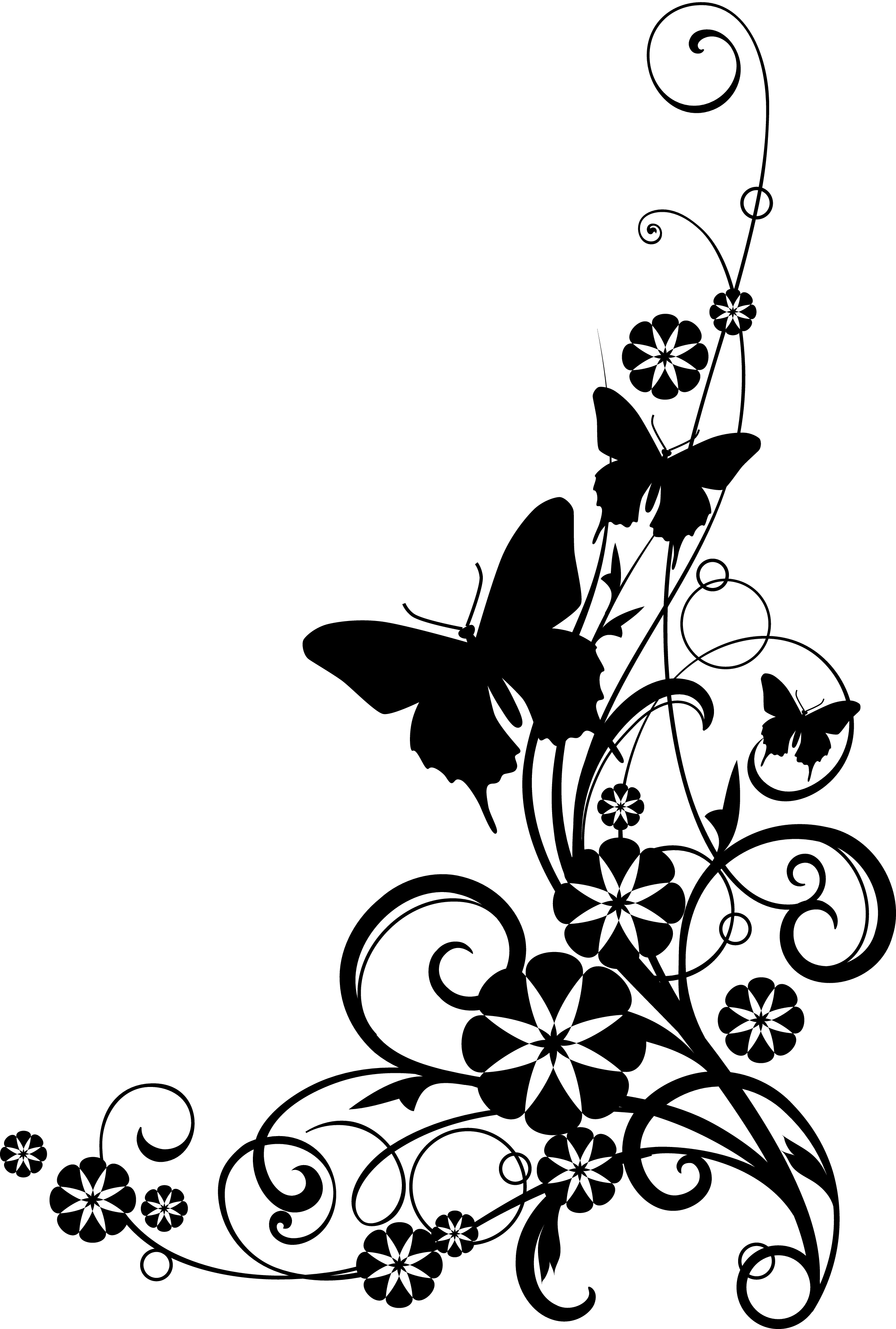 Black And White Flower Border Clipart Atek9ba6c Png