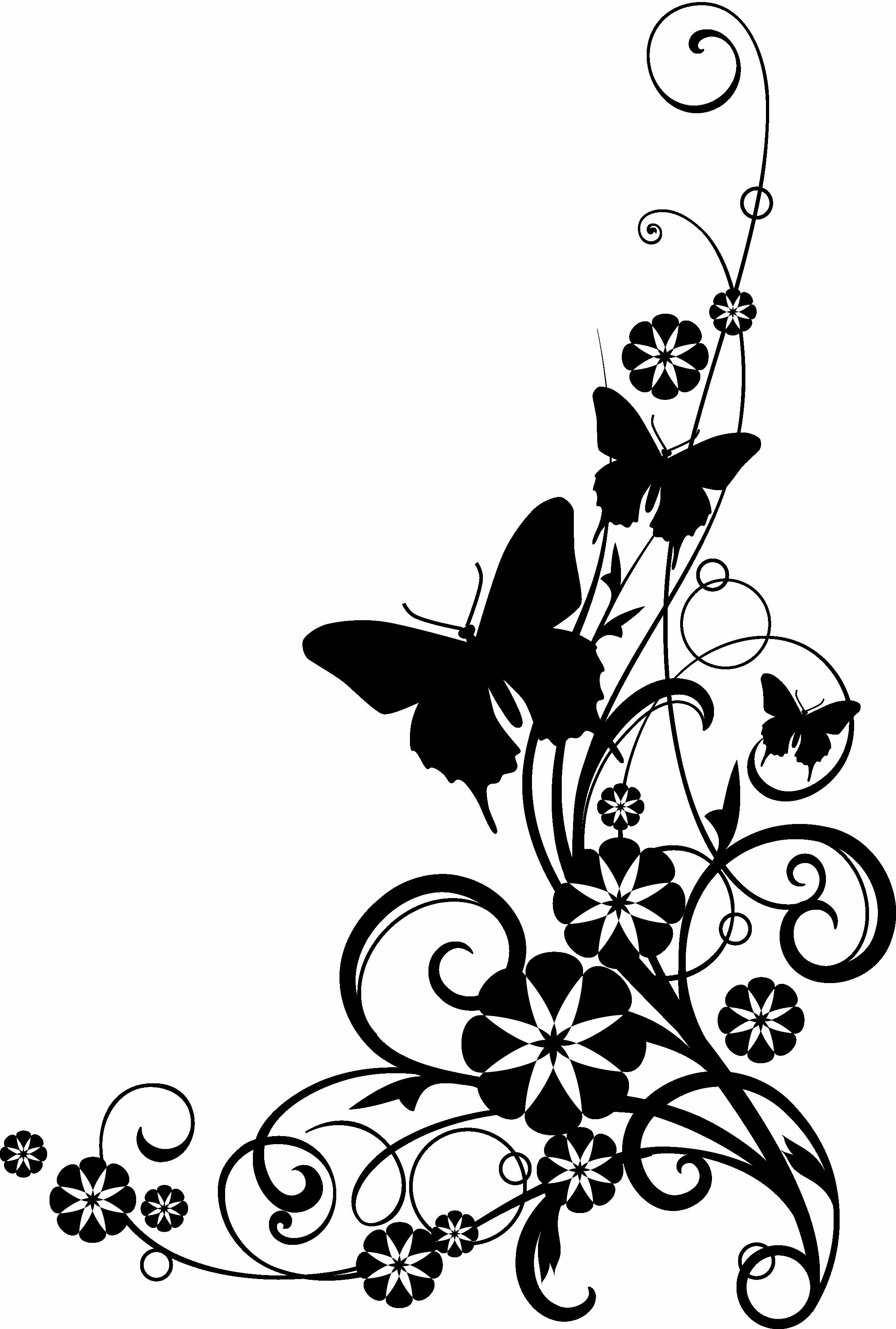 Black Rose White Flower Clipart - Clipart Kid