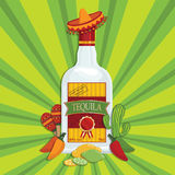 Bottle Tequila Stock Illustrations Vectors   Clipart    456 Stock