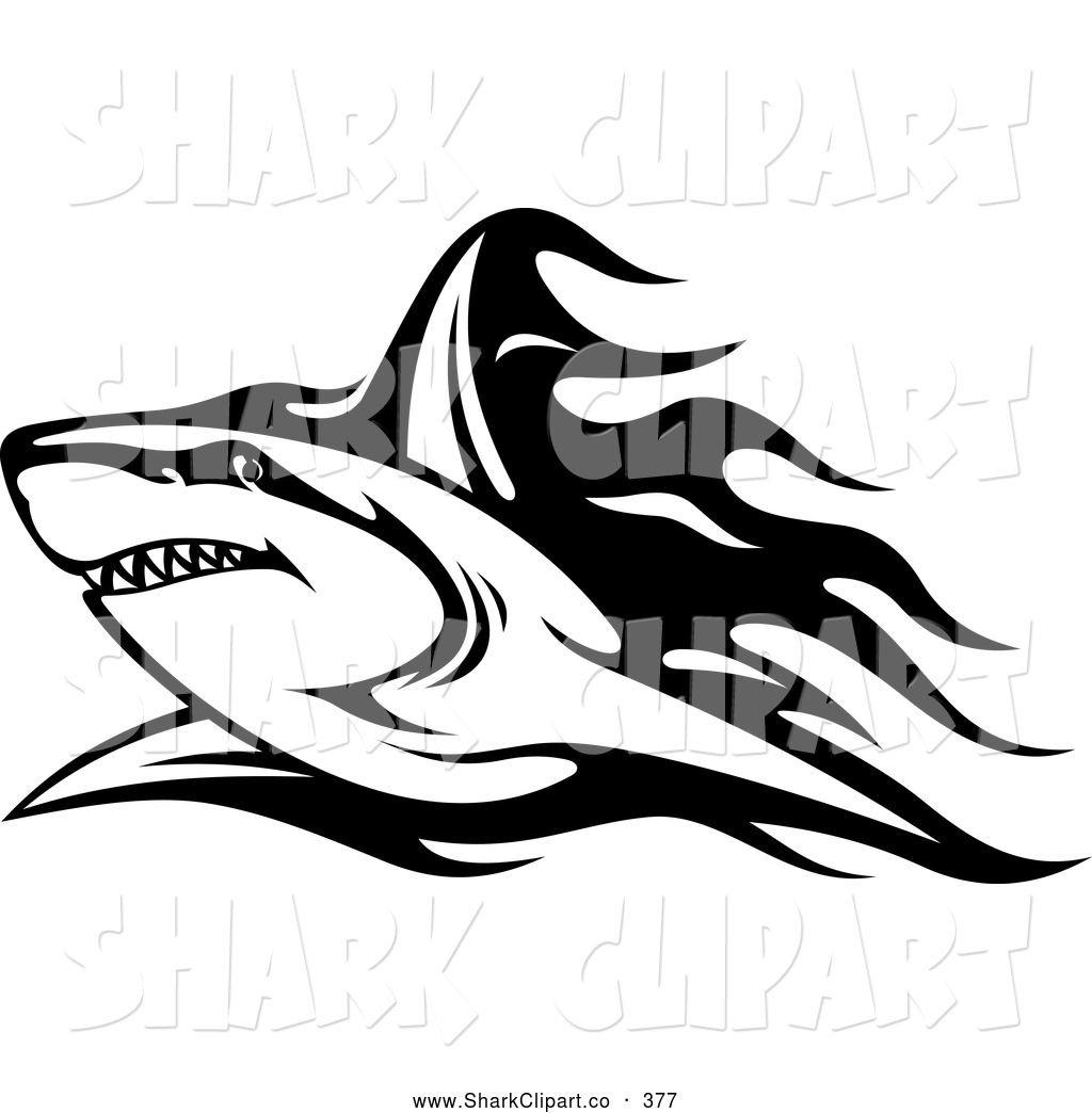 Shark Black And White Clipart - Clipart Kid