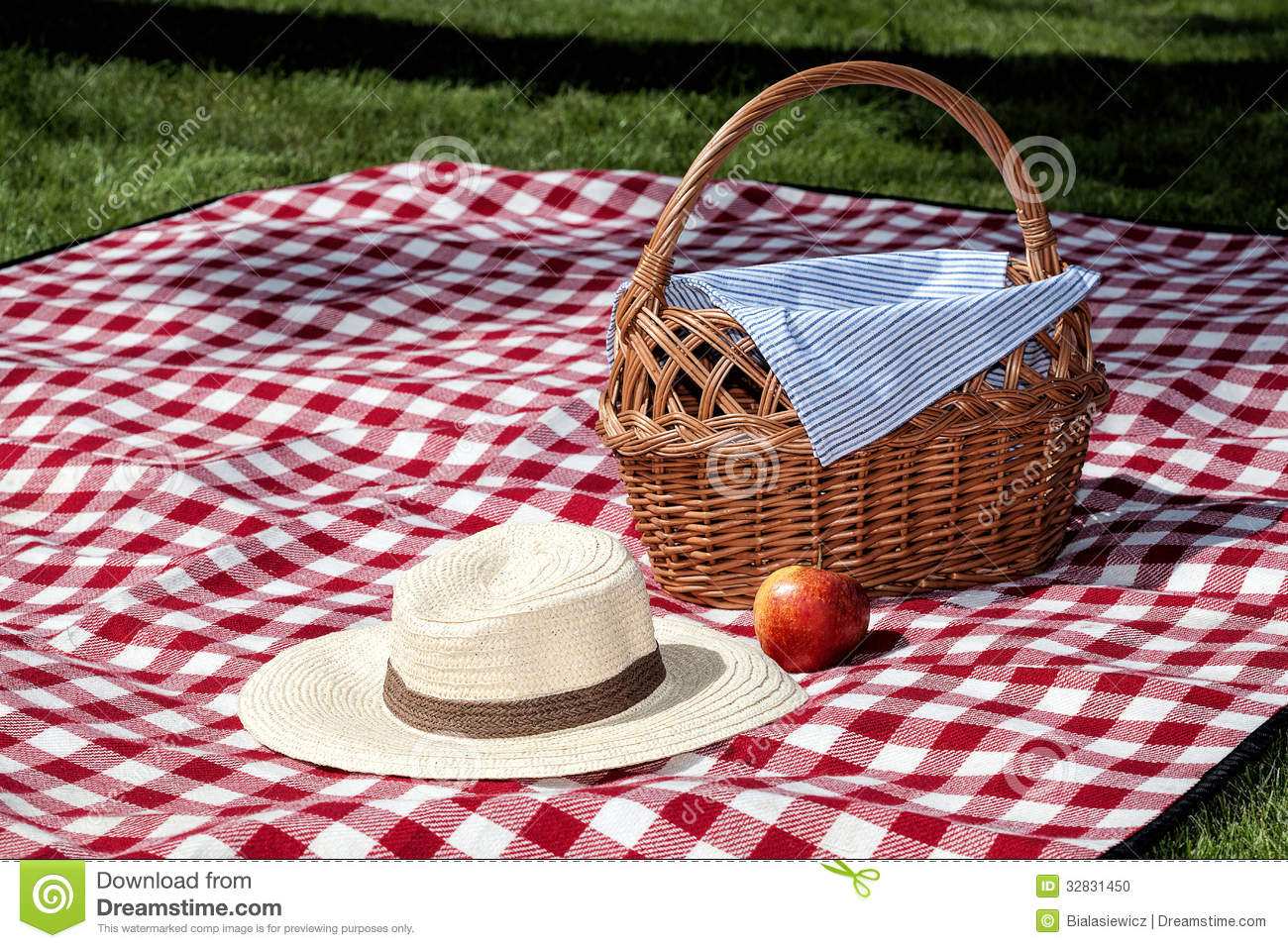 Picnic On The Grass With A Blanket And A Wicker Basket