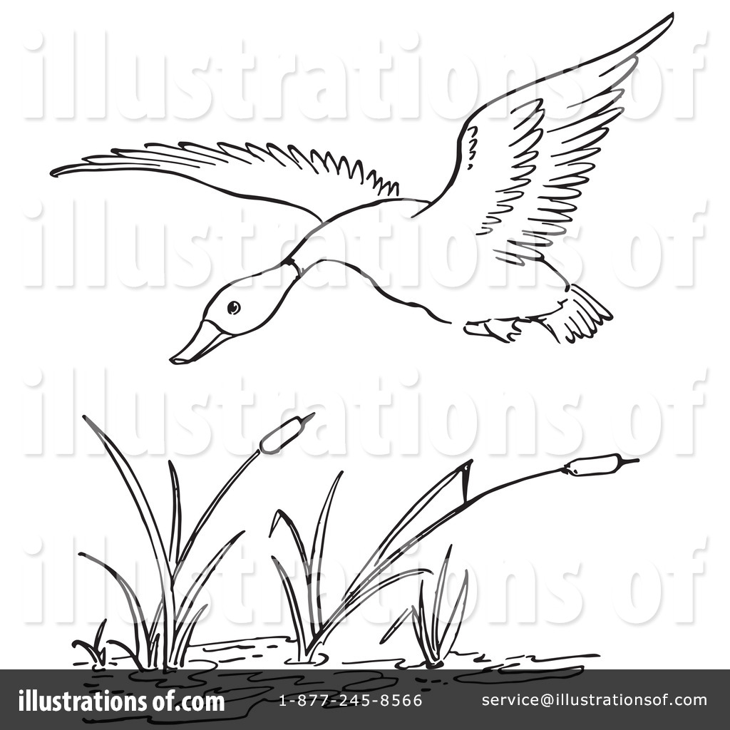 Pond duck hunting clipart clipart suggest for Duck hunting coloring pages