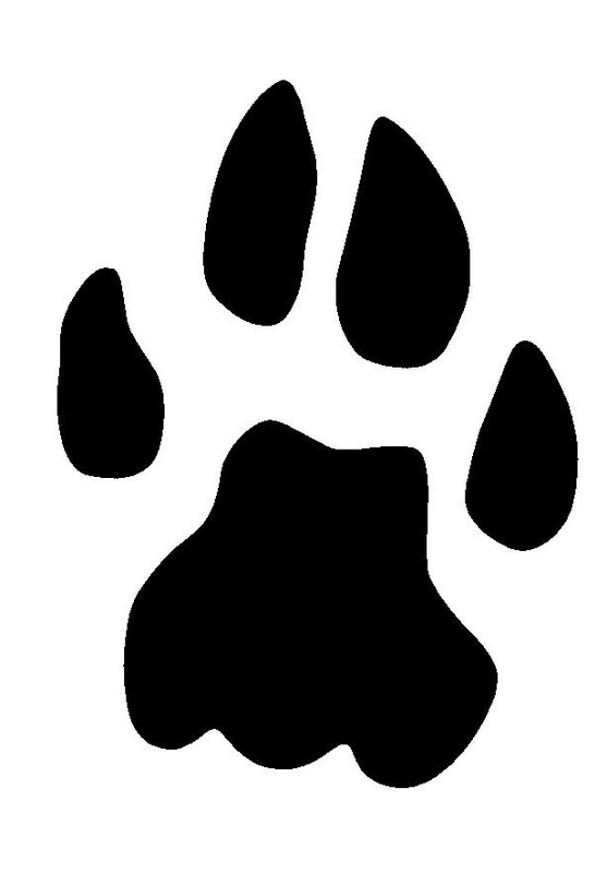 Related Pictures Black Paw