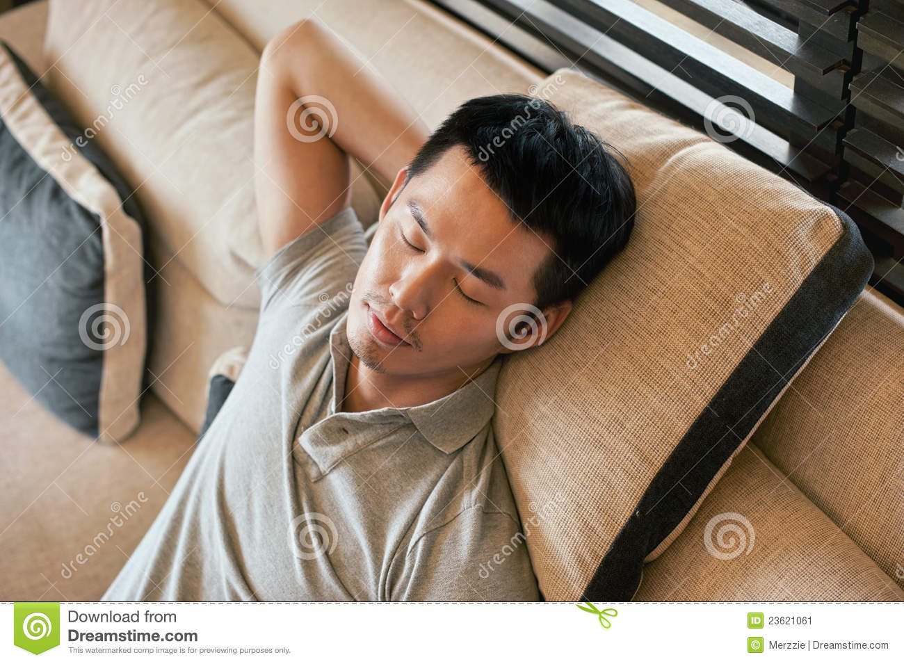 Attractive Asian Man Taking A Nap At Home On The Sofa