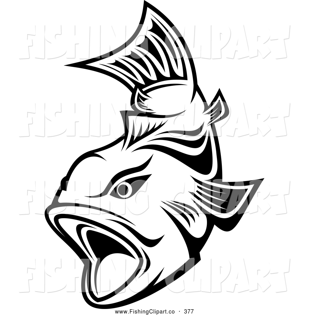 Black And White Trout Swimming With Mouth Open By Seamartini Graphics