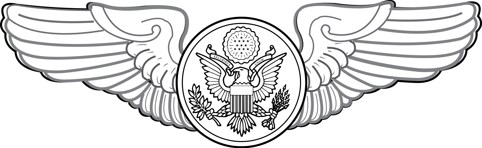 Military Badges Of The U S  Air Force   Stargate Meropis