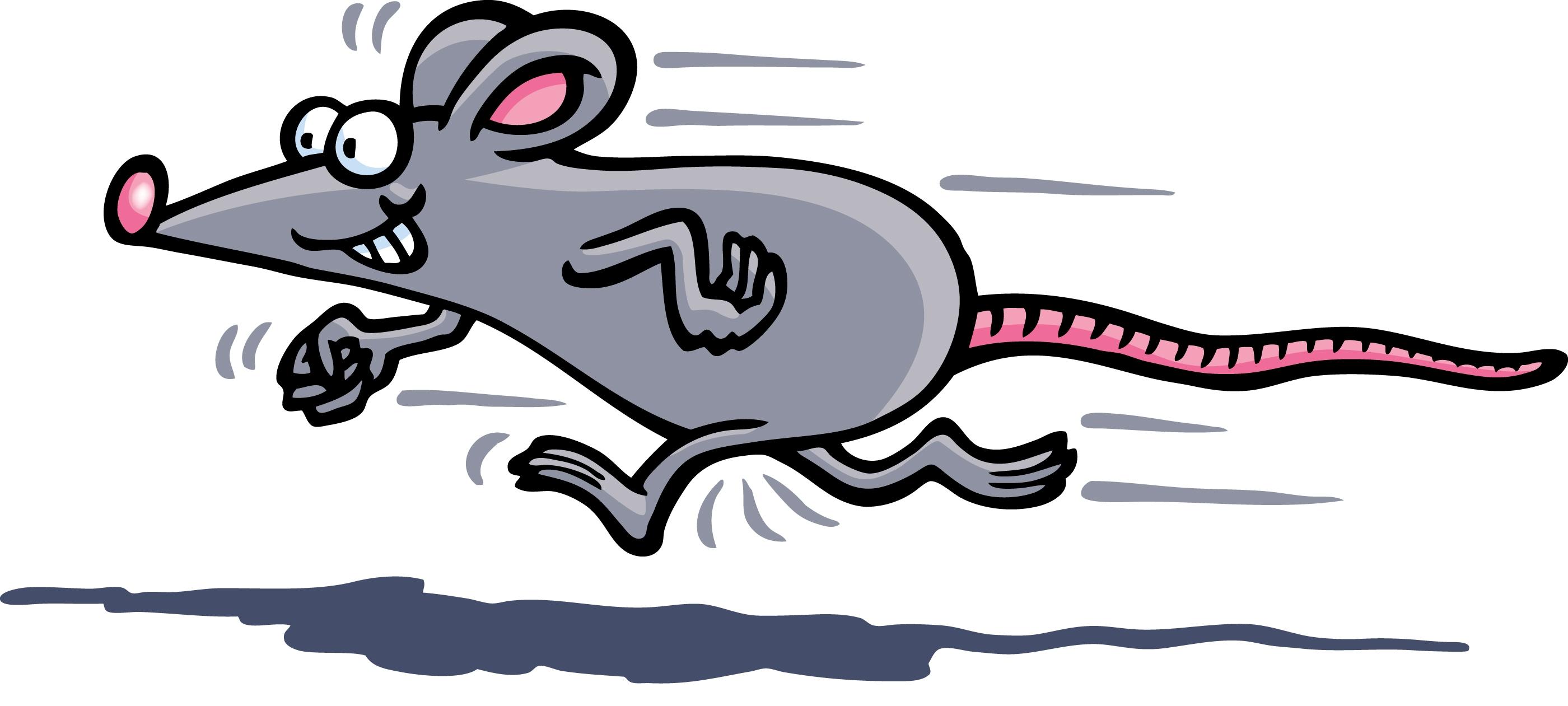 Mouse Race Clipart - Clipart Kid