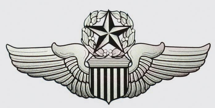 Usaf Command Pilot Wings Decal     4 00   Hat N Patch