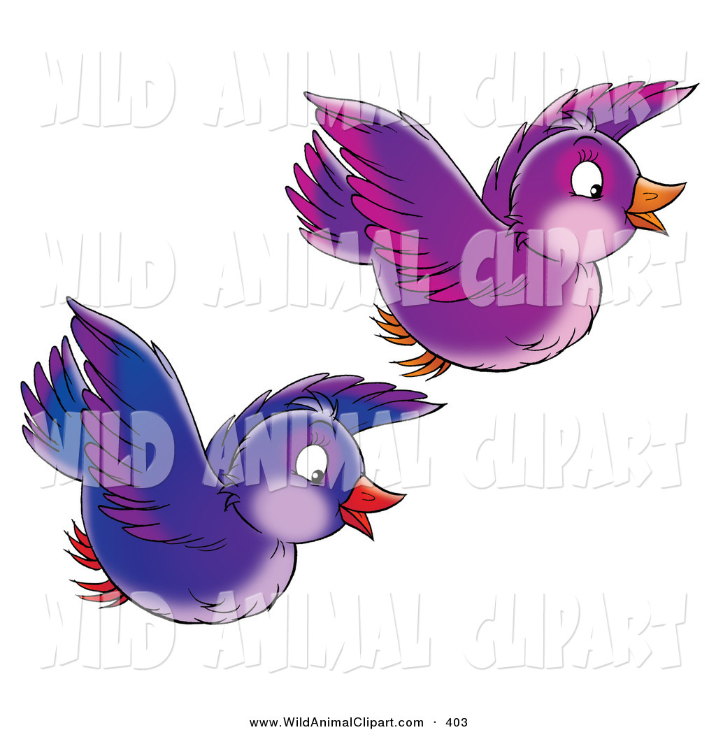 Clip Art Of A Two Purple And Blue Singing Birds Flying Together On A