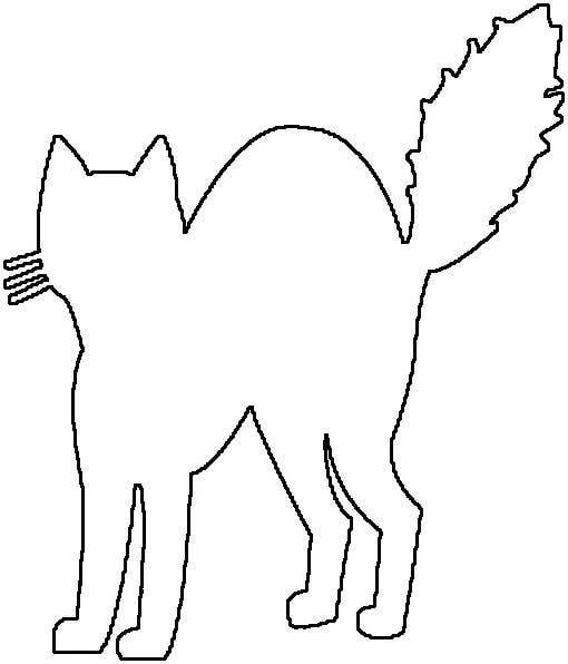 Galerry scared cat coloring page