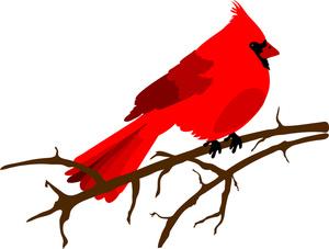 Clip Art Cardinal Clip Art christmas cardinal clipart kid bird clip art clip
