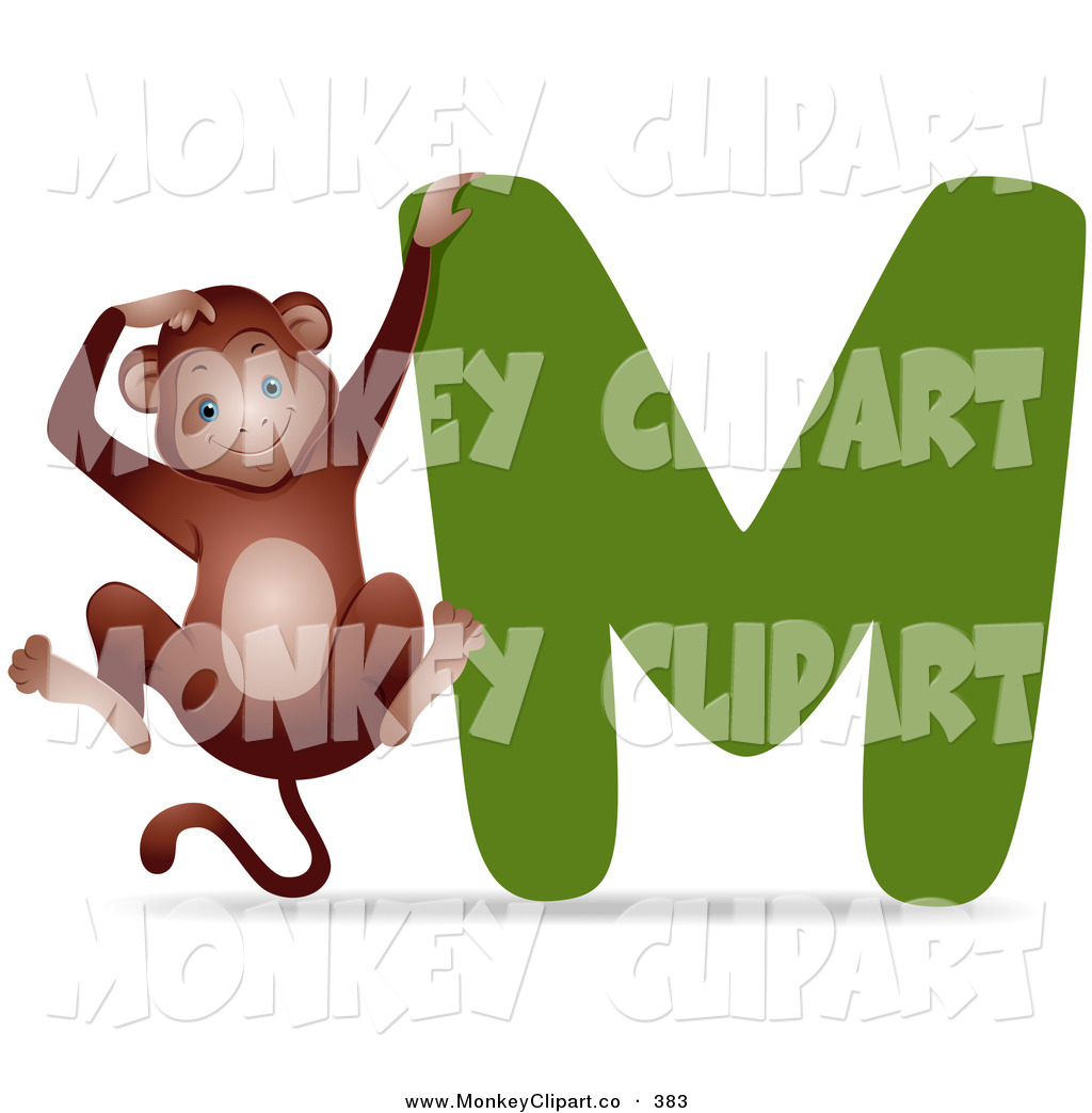 Animal Alphabet With A Monkey By A M On White