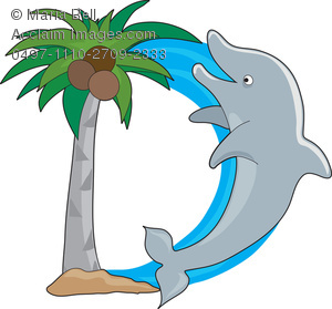 For Dolphin   Letters Of The Animal Alphabet Clip Art Illustration