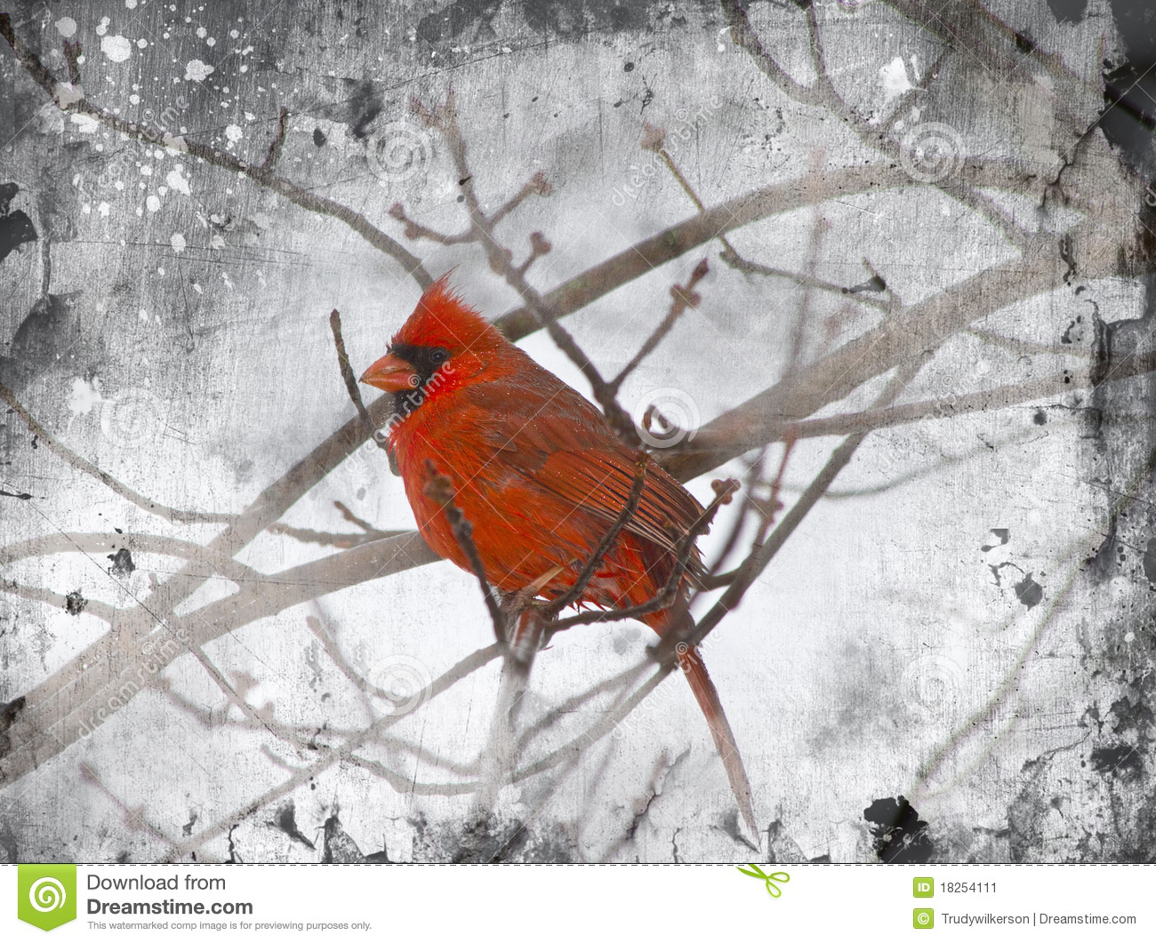 Illustration Of Red Cardinal Sitting On Branches In The Winter