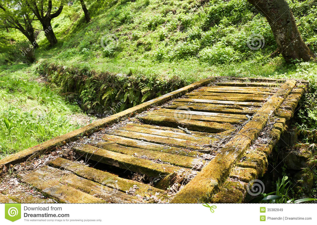 Wood Bridge Clipart Moss Wooden Bridge