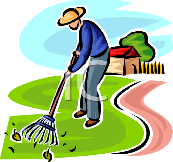 Man Raking Leaves In His Yard   Royalty Free Clip Art Picture