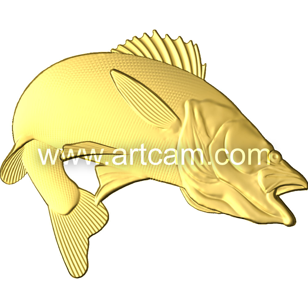 Clipart Fish Walleye