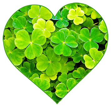 Heart Made With Shamrocks Png