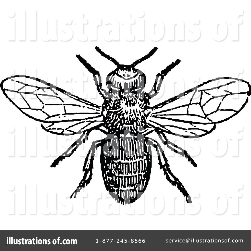 vintage bee clip art - photo #23