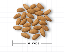 Almonds   Http   Www Wpclipart Com Food Nuts Almonds Png Html