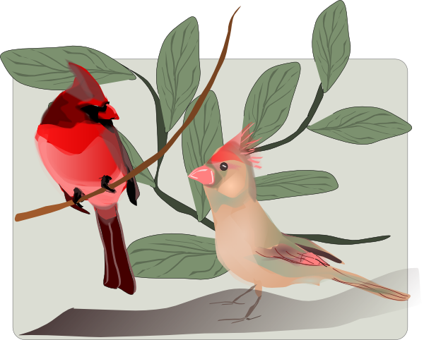 Cardinals Clip Art At Clker Com   Vector Clip Art Online Royalty Free