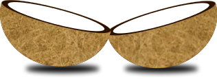 Coconut   Http   Www Wpclipart Com Food Nuts Coconut Png Html