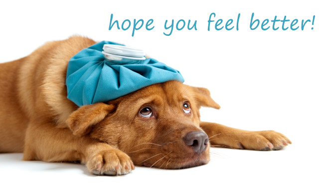 feel better soon clipart clipart suggest
