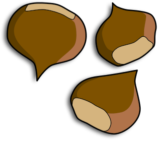 Free Nuts Clipart   Clipart Picture 7 Of 10