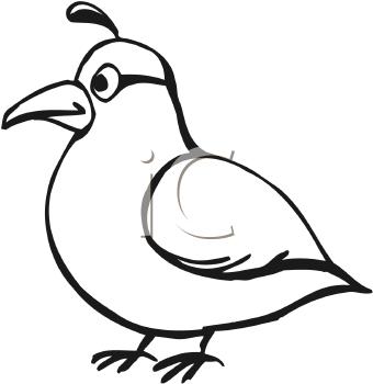 Royalty Free Quail Clip Art Bird Clipart