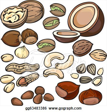 Vector Illustration   Nuts Seeds Icon Set  Stock Clip Art Gg63483386