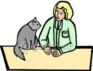 Cat At The Vet S Office   Royalty Free Clipart Picture