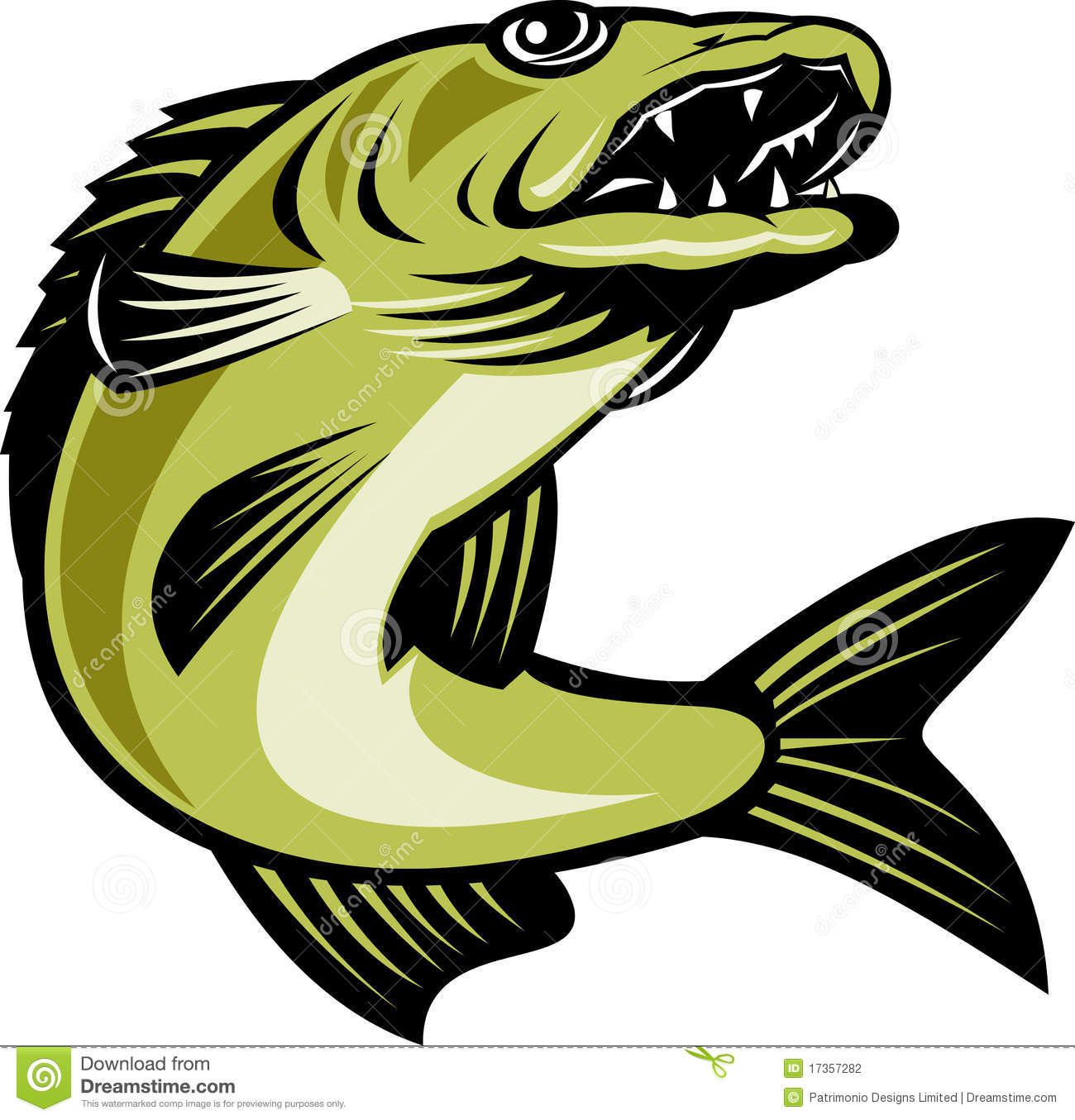 Retro Illustration Of A Walleye Fish Jumping Isolated On White