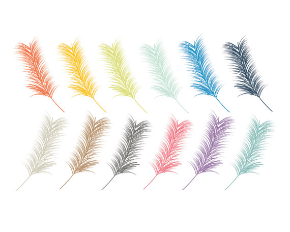 60  Off Sale Bird Feathers Clipart Bird Clipart Nature Animal Clipart