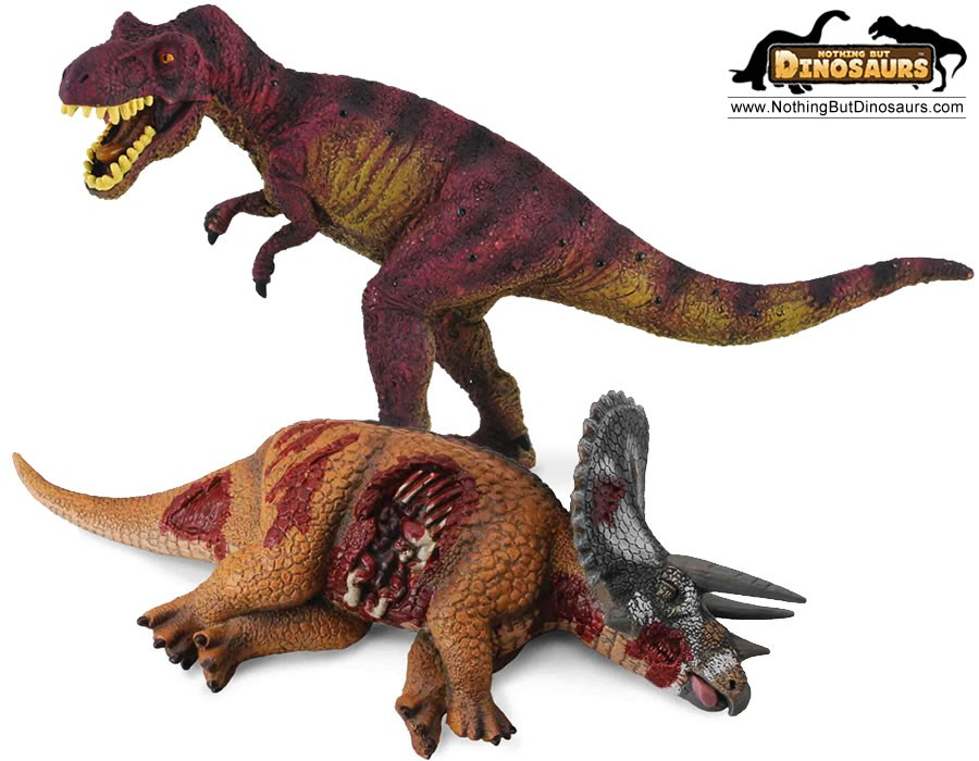 Collecta Realistic T Rex And Dead Triceratops Dinosaur Collectible Toy