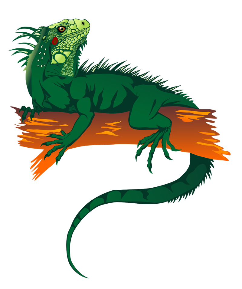 Free Iguana Clip Art