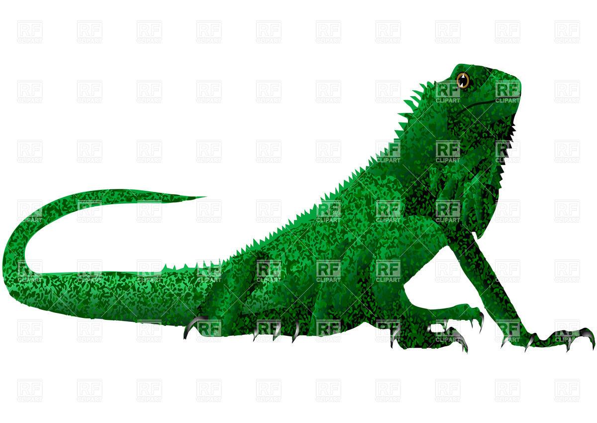 Iguana Clip Art Green Iguana Lizard Download Royalty Free Vector File