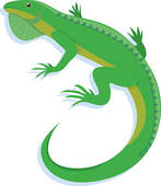 Iguana Clipart Royalty Free    Clipart Panda   Free Clipart Images