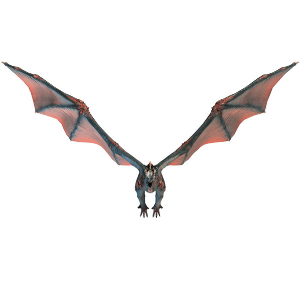 Realistic Dragon Pictures Free Cliparts That You Can Download To You