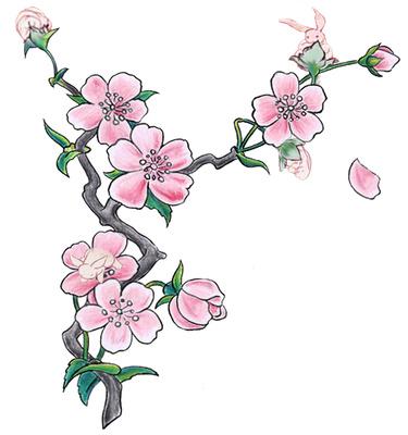 Clip Art Tree Blossoms Clipart - Clipart Kid