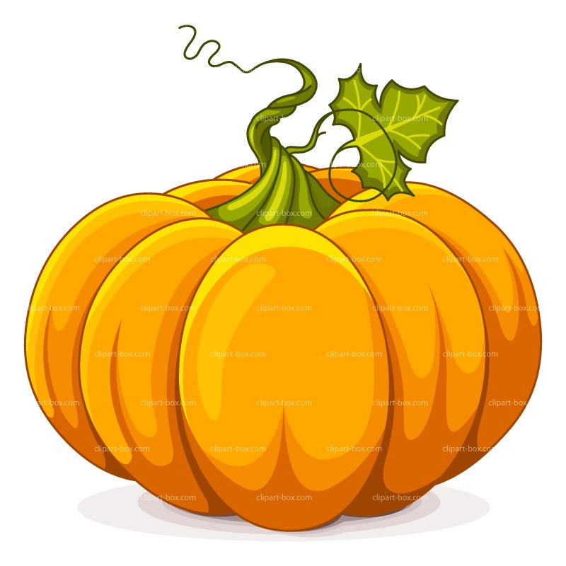 Clip Art Pumpkin Images & Pictures - Becuo