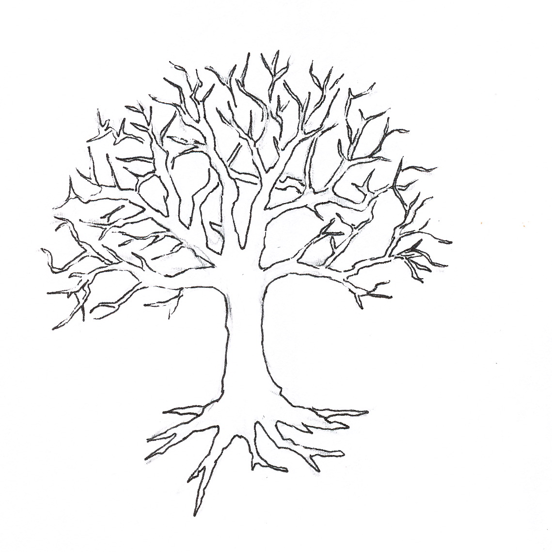 bare tree with roots clip art  u2013 cliparts
