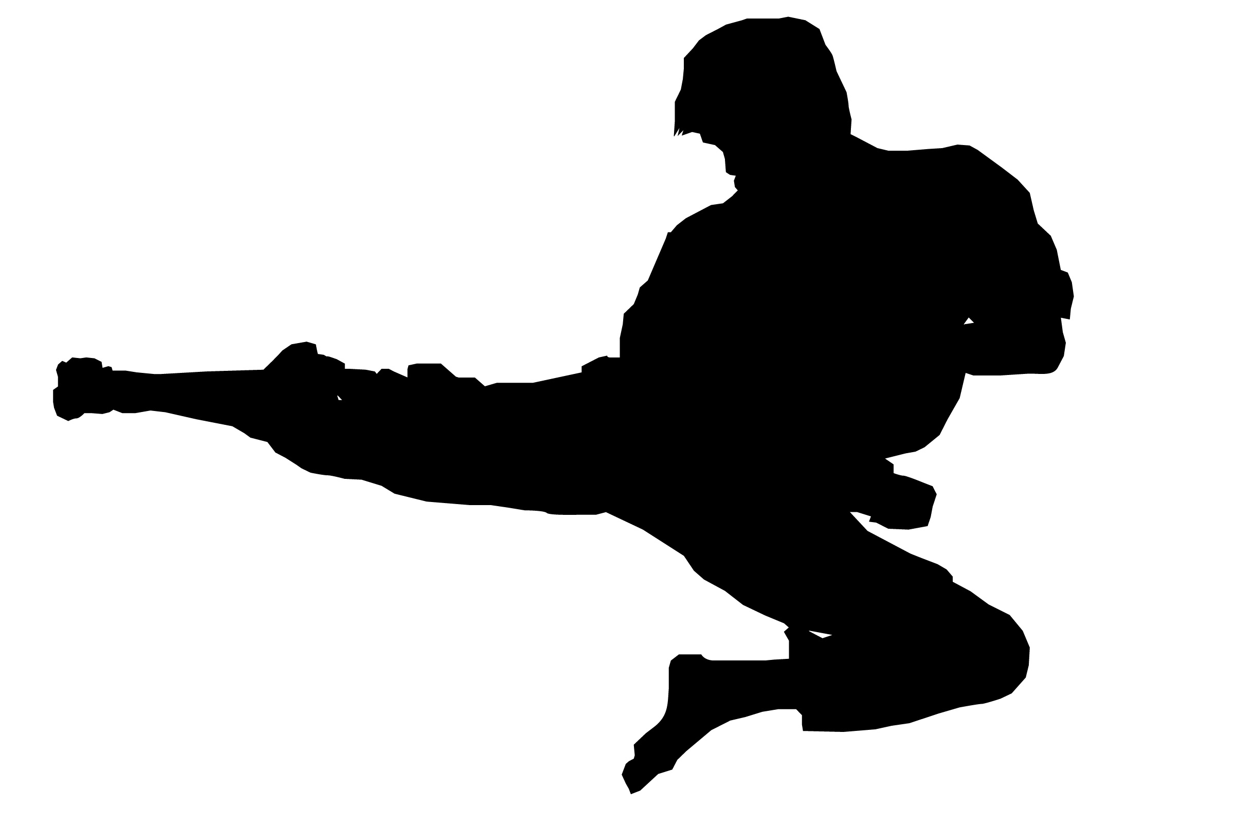 karate-silhouette-clip-art-karate-demonstration-1CDqDO-clipart.jpeg